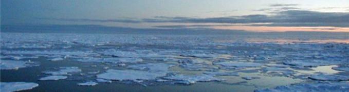 Laptev Sea:: Blackbourn Geological Services